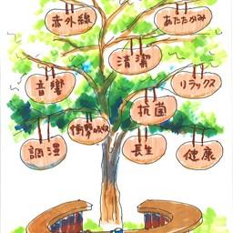 木の空間の魅力の秘密 その1